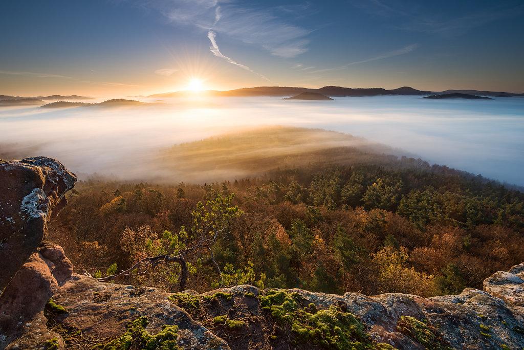 Herbstmorgen